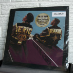 100_ERIC_B_and_RAKIM_follow_the_leader_RECORD_STORE_DAY_KNOXVILLE_2014