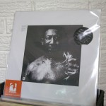 02_muddy_waters_WILD_HONEY_RECORDS_TENNESSEE