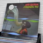 04_ALICE_COLTRANE_a_monastic_trio_vinyl_wildhoneyrecords_knoxville