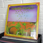 100_HAWKWIND_vinyl_Record_Store_Day_2015_wild_honey_records_knoxville_tennessee