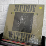 17_MUDDY_WATERS_king_bee_vinyl_wild_honey_records_knoxville_tennessee_record_store