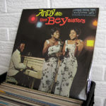 45_ANDY_AND_THE_BEY_SISTERS_VINYL_Wild_Honey_Records_Knoxville_Tennessee_record_store